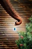 大象圣诞节 图库摄影