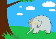 大象在森林里 免版税库存照片