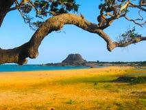 大象岩石在yala国家公园斯里兰卡 免版税库存照片