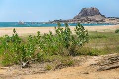 大象岩石在Yala国家公园 免版税图库摄影