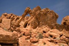 大象岩石 库存照片