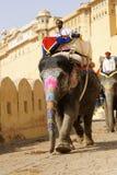 大象工作 免版税库存照片