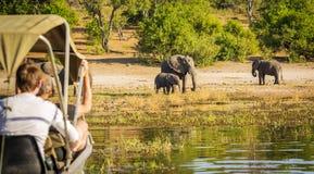 大象徒步旅行队的非洲游人 免版税库存图片