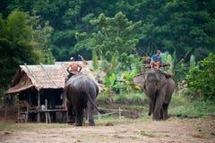 大象村庄在北碧,泰国 免版税图库摄影