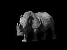大象特写镜头低调单色画象 免版税库存图片