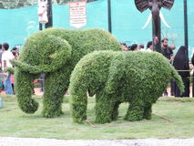大象由叶子制成 免版税库存照片