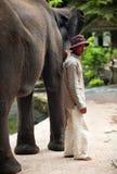 大象老板 免版税库存图片
