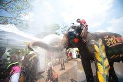 大象节日乐趣水 库存照片
