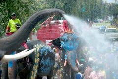 大象节日乐趣水 图库摄影