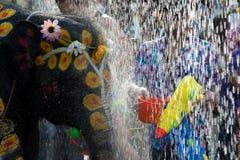 大象节日乐趣水 免版税库存照片