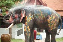 大象花梢使用的水年轻人 免版税库存图片