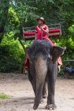 大象车手在柬埔寨 免版税库存图片