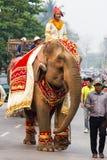 大象队伍老挝人新年2014年在琅勃拉邦,老挝 免版税库存图片