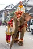 大象队伍老挝人新年2014年在琅勃拉邦,老挝 图库摄影