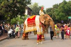 大象队伍老挝人新年2014年在琅勃拉邦,老挝 免版税图库摄影