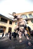 大象队伍荣誉已故的国王 免版税库存照片