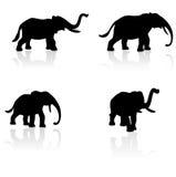 大象集合剪影向量 免版税库存照片