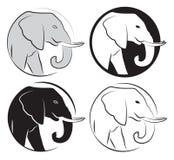 大象集合 免版税库存图片