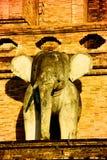 大象雕塑在清迈寺庙Wat Chedi Luang的 库存照片