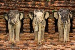 大象雕象在Sukhothai历史公园,泰国 免版税库存照片