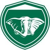 大象顶头象牙前面盾 免版税图库摄影
