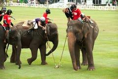 大象马球比赛。 免版税库存照片