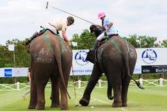 大象马球 免版税图库摄影