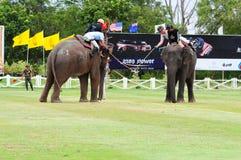 大象马球 图库摄影