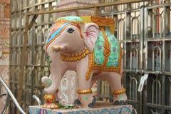 大象,印度寺庙 库存照片