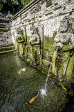 大象洞水池在巴厘岛-印度尼西亚 库存图片