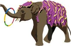大象 皇族释放例证