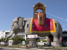 大象lucy 免版税库存图片