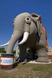 大象lucy 库存照片