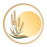 大迅速地扩展-商标-商标的太阳和麦子 库存图片
