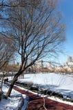 大连都市风景在冬天 免版税图库摄影