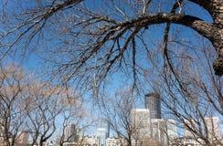 大连都市风景在冬天 免版税库存照片