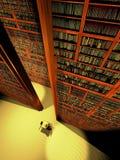 大量书 库存例证