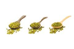 大量在木匙子的绿豆在白色 免版税库存照片