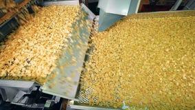 大量油炸薯片沿传动机移动 薯片生产 股票视频