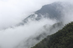 大量的雾 免版税图库摄影