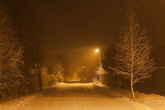 大量降雪在晚上。 莫斯科地区。 俄国。 免版税库存照片