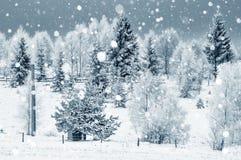 大量降雪 冬天山风景  免版税图库摄影