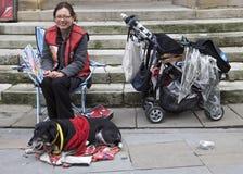大问题和狗 免版税图库摄影