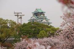 大阪城堡佐仓 库存图片