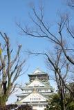 大阪城堡在与清楚的天空大阪,日本的冬天 免版税库存图片