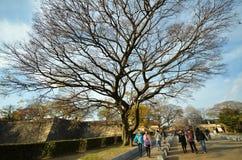 大阪城堡大门风景在大阪 库存图片