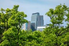 大阪,日本在城堡和商业区的市地平线的 库存图片