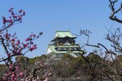 大阪,日本城堡 图库摄影