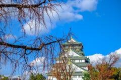 大阪,日本- 2018年3月02日:李属mume在大阪城公园进展在大阪,日本 一个著名旅游胜地 夏季蓝色sk 免版税库存图片