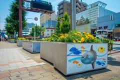 大阪,日本- 2017年7月18日:关闭与一些黄色花的一张扔石头的花盆在它和海的美好的凹道 库存图片